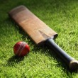 balle et batte de cricket — Photo