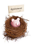 Piggy bank in bird's nest — Stockfoto
