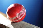Cricket-schläger und ball — Stockfoto