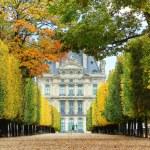 hösten i paris — Stockfoto