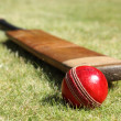 Cricket bat and ball — Stock Photo #24534395