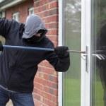 Burglar — Foto de Stock   #24539617