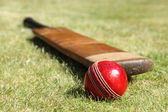 Cricket bat and ball — ストック写真
