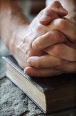 Biddende handen op een heilige bijbel — Stockfoto