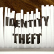 Identity theft — Stock Photo #24547993