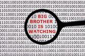 Big brother regarde — Photo