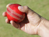 Cricket bowler with ball in hand — Stock Photo