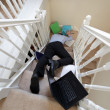 Accident at work — Stock Photo #41784167