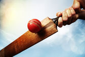 Cricket player hitting ball — Stock Photo