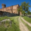 Castle in Swiecie — Stock Photo #26861783