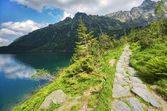 Mountain path — Stock Photo