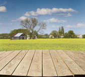 Empty tabletop in the countryside — Stock Photo