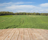 Empty wooden table in the countryside — Stock Photo