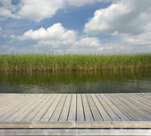 Wooden jetty on the lake — Stock Photo