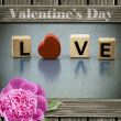 Valentines Day — Stock Photo #38006109