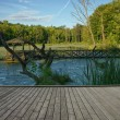 Stock Photo: Arbor on pond