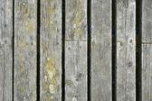 Rotted planks — Zdjęcie stockowe
