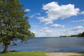 Lake view — Stockfoto