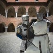 Постер, плакат: Fighting knights