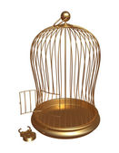 Open gold cage with the forced lock — Stockfoto