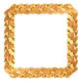 Golden square frame of Laurel branches — Stock Photo