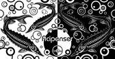 Acipenser (black & white) — Stock Vector