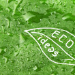 Abstract green background — Stock Photo #27566305