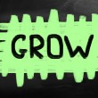 Stock Photo: Grow concept