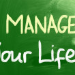 Manage Your Life Concept — Stock Photo #32527071