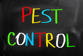 Pest Control Concept — Stock Photo