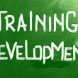Training Development Concept — Foto Stock