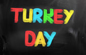 Turkey Day Concept — Foto Stock
