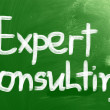 Stock Photo: Expert Consulting Concept