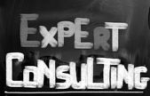 Expert Consulting Concept — Stock Photo