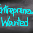 Stock Photo: Entrepreneurs Wanted Concept