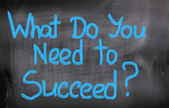 What Do You Need To Succeed Concept — Stock Photo