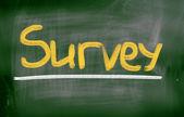 Survey Concept — Stock Photo