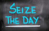 Seize The Day Concept — Stockfoto