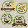 Healthy food labels. — 图库矢量图片
