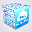 Tag cloud inside a cube about cloud computing concept. — Imagen vectorial