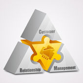 Prism puzzle: Customer Relationship Management concept — Stockvektor