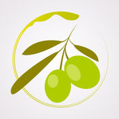 Olive oil background — Stock Vector