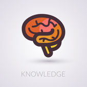 Brain and knowledge — Stock Vector