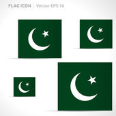 Pakistan flag template — Stock Vector