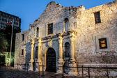 Alamo — Stok fotoğraf