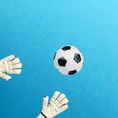 Goalkeeper catches — Foto Stock