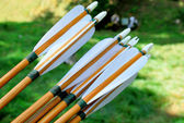 Wooden arrows for archery — Stock Photo