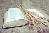 Holy Bible on the fabric — Stock Photo