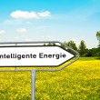Intelligent energy — Stock Photo