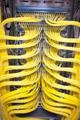 Network cables and server — Stock Photo